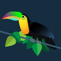 toucan in illustrator